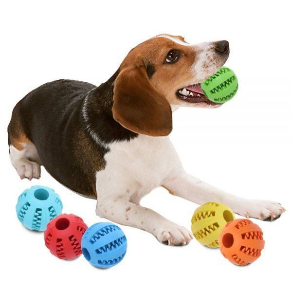 توپ دنتال سگ ( مسواک سگ )-سایز متوسط CBT-M